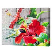 Картина за номерами + Алмазна мозаїка 2в1 Колібрі збирає нектар YHDGJ 75519 (30) 50х40см