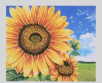 Картина за номерами + Алмазна мозаїка 2в1 YHDGJ 75100 (30) 50х40см