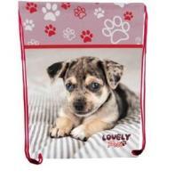 "Сумка для взуття ""Lovely Pets"", 46*33 см, CLASS"