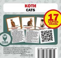 Набір карток Коти англійсько-українські