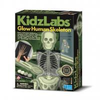 Набір для експериментів 4М Світний скелет людини (00-03375)