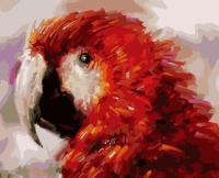 Картина по номерах Bookopt Папужка 40х50 (BK1124)