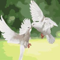 Картина по номерам - Білосніжні голуби (КНО4149) 40*40