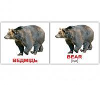 Картки Домана україно-англійські «Дикі тварини/Wild animals»