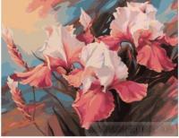 Картина по номерах  Букет ірисів 40х50 (ВК1182)